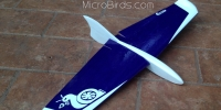 Slope-Soaring Planes Firefly DLG HLG RC Aircraft