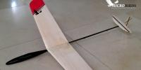 micro RC radio control small little DLG HLG glider hadn launch glider mini