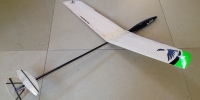 RC Gliders Smallest Micro DLG Hand Launch Radio Controlled Glider