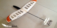 worlds-smallest-micro-Mini-microlite-dlg-hlg-side-arm-launch-glider-rc-plane