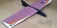 FireFly slope soaring DLG HLG Handmade delta wing rc glider