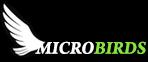 Micro Bird Gliders RC Mini Glider Planes Handmade