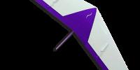 Halfpipe-flying-wing-slope-soaring-glider-kit
