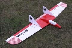 Hoodlum-flying-wing-rc-glider-delta-bird-like