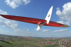 MIRO-Run-detal-wing-balsa-flying-wing-slope-dlg-radio-control-glider-bird-shape