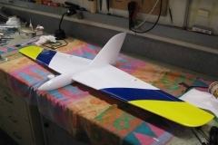 Molded-JW-rc-plane-delta-wing
