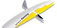 RCRCM-Gooney-Flying-Wing-1.5M.-sport-model-for-the-slope-f3f-f3b-f3k