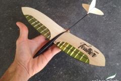 nano rc airplane micro owl nano feather dlg glider
