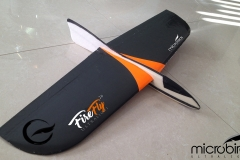 RC-Glider-DLG-Radio-Control-airplanes-servos-delta-flyign-wing-rc-bungee-microbirds-firefly-radio-control-remote-control-airplanes-fly-glider-thermal-lift