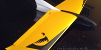 eflite-soaringusa-horizonhobby-gliders-RC-Sailplanes-and-Gliders-Remote-Controlled-Hobby