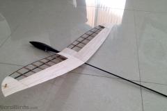 microbirds-ultarlight-DLG-feather-rc-glider-2019-design-prototype-3