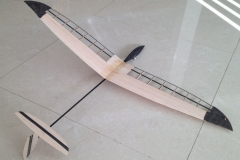 mini-micro-small-light-weight-rc-glider-dlg-hlg-slope-soaring-hand-launch-glider