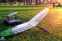 radio-control-rc-glider