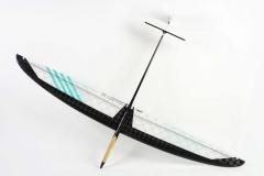 Concept-CX4-Dbox-dlg-fiber-discus-launch-rc-glider-airplane-radio-control
