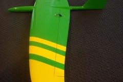 Atomic-pickle-Atomic-Wedgee-rc-glider