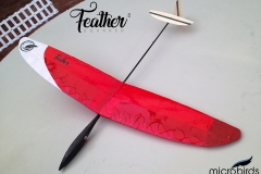 1_feather-squared-worlds-lightst-rc-glider-radio-controlled-microbirds-funhobby-glider-plane-fly-slope-soaring