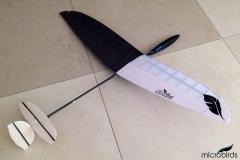 micro-dlg-glider-mini-discus-launch-rc-glider2
