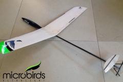 micro-dlg-rc-glider-radio-control-remote-control-airplane