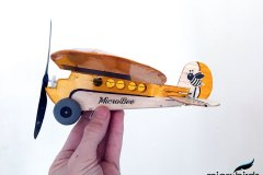 micro-lazy-bee-electric-rc-airplane-kit-microbirds-radio-control-airplane-fly-toy-hobby