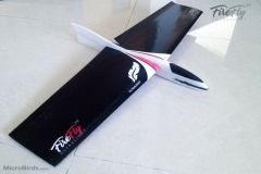 micro-slope-radio-controll-rc-glider-airplane-hand-launch-rc