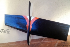 ultralight-radio-controll-rc-glider-airplane-DLG-hand-launch-rc-firefly-microbirds