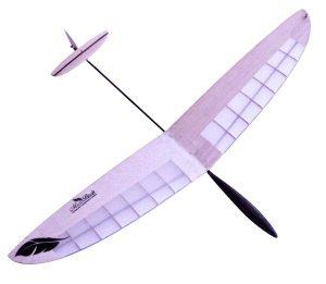 Micro RC Gliders