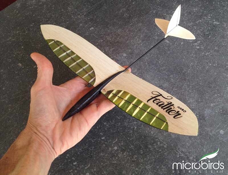 nano radio control hobby balsa wood DIY model feather microbirds build